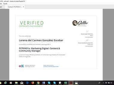 Digital Marketing Certification