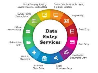 Data Entry, Data Analysis And Data Mining