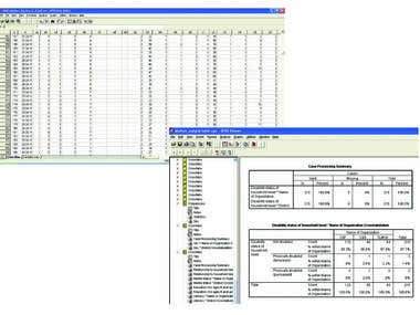 SPSS data entry & output table sample.