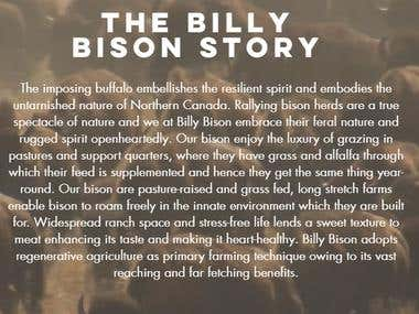 Website Content for billybison.com