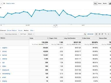 Our Client's Organic Traffic Report