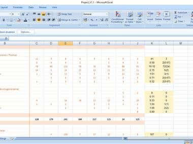 EXCEL REPORTING WITH VBA SUPPORT