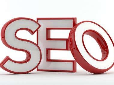 I Will Do First Page Google Ranking SEO For Your Websitevvvv