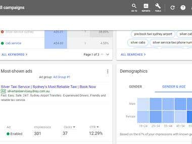 Google Adwords Campaign Creation and Running