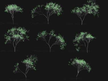 Fractal tree generation and animation.