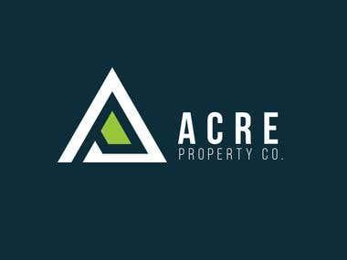 Logo Design Real e State Company