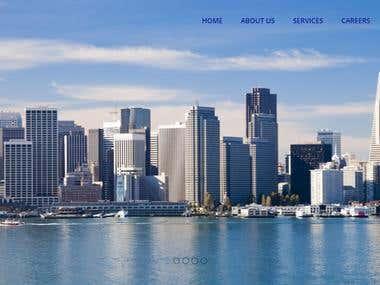 Pacific Property Ventures ( WordPress Website Design )
