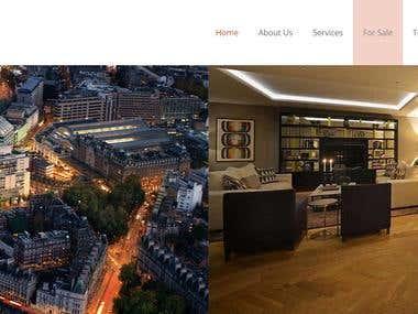 TRISARA CONSULTANTS ( WordPress Website design )