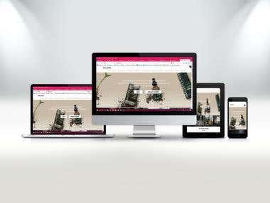 WordPress (CMS) eCommerce Web Design & Development