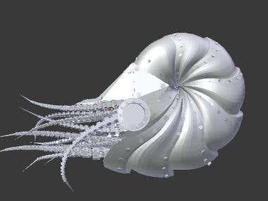 shell 3d design