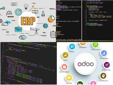 ERP & Odoo Developer