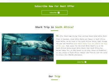 Shark Cage Diving - Home (Travel agency)