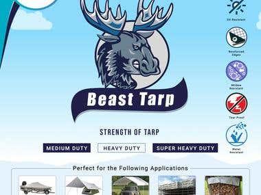 Moose logo and Brochure design
