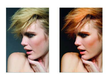 Dominic Nicolls Model