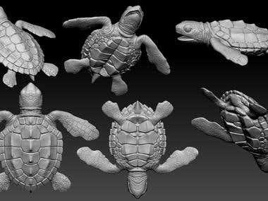 baby turtle 3d model