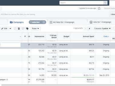 Results of Facebook Campaigns - 4