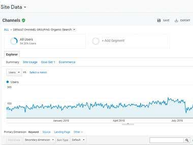 Google Analytics Traffic Report - 1