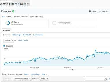 Google Analytics Traffic Report - 2