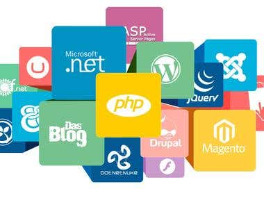 Web development for IT company