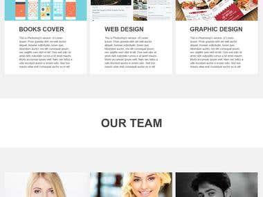 Website Designs Professional