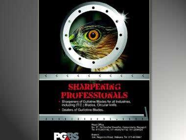 PGBS Logo & Press ad