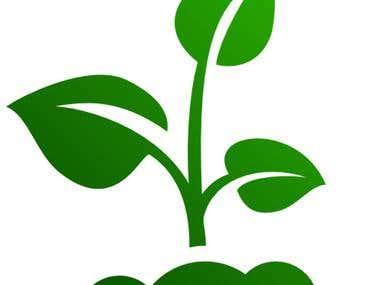 Identify Plants