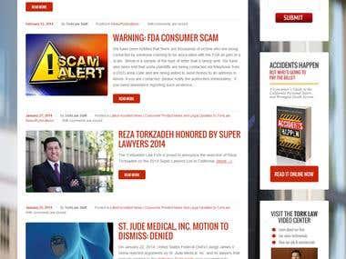 www.torklaw.com || Wordpress || Responsive