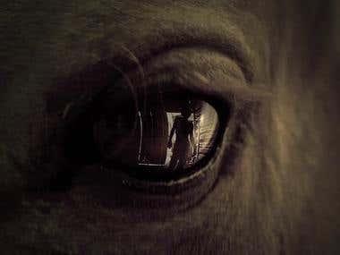 Walking Dead Teasers - Motion & Sound