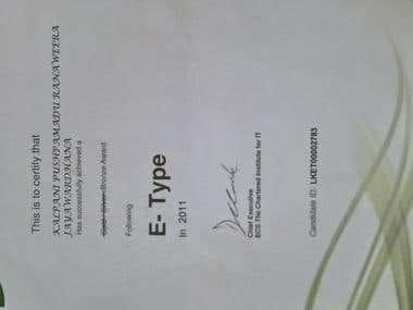 E-Type in 2011(Bronze Award) (2011)