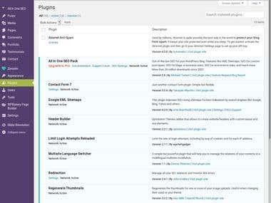 WordPress Network dashboard configuration in safety mode.