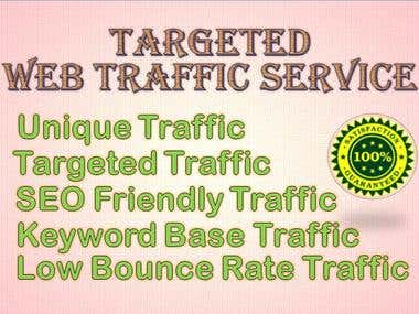I Will Generate Targeted Web Traffic