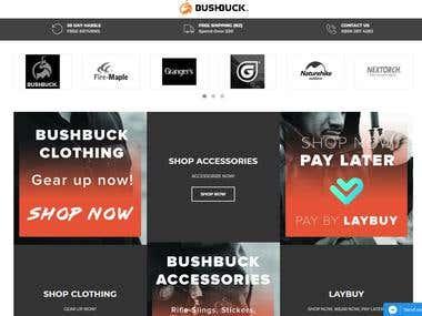Shopify Developer