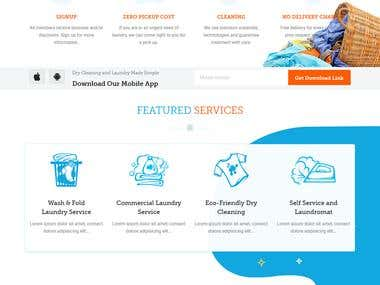 Wash-rinse Website design and PHP Development