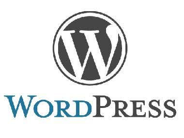 I have 4 years experience in wordpress