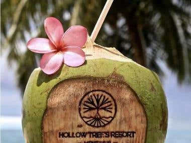 Hollow Tree's Resort - Surf Resort in the Mentawai Islands