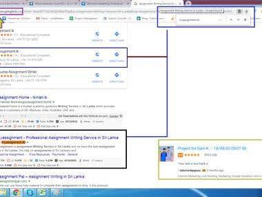 Top 2nd Position in Sri Lanka (Google.lk)