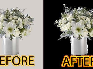 Flowerpot Background Remove