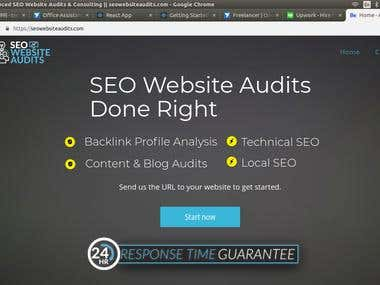 Seoaudit Wordpress Project