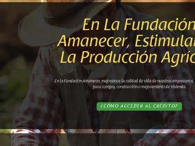 Pagina Web Microfinanciera