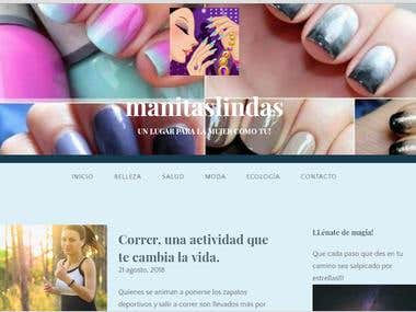 DISEÑO DE BLOGS Y PAGINAS WEB - WORDPRESS