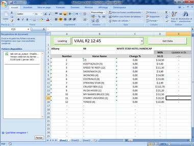 MS Excel Scraping VBA Macro