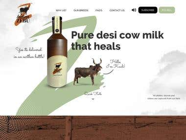 Indian Zebu Website