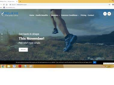 Wordpress website modification
