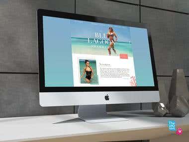 web Desgin / Diseño web