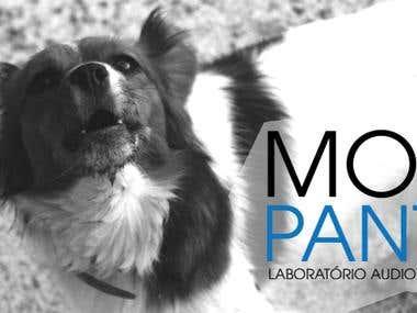 Mosca Pantone - identity