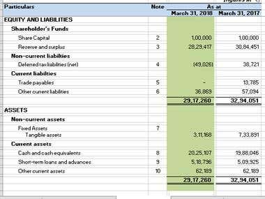 Financial Statement/Cash Flow