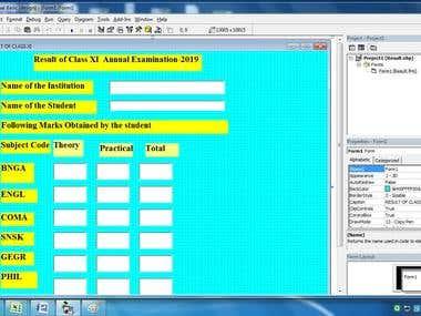 Visual Basic Project