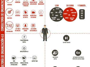 INFOGRAPHICS FOR A CONSULTANCY