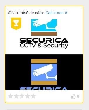 Design a logo and branding for a cctv & security company