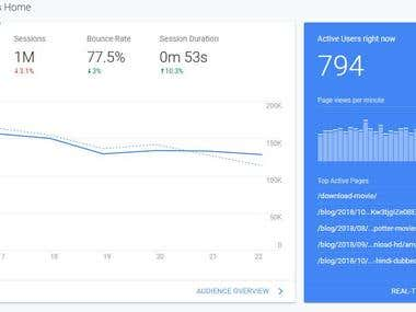 Real time website visitor report